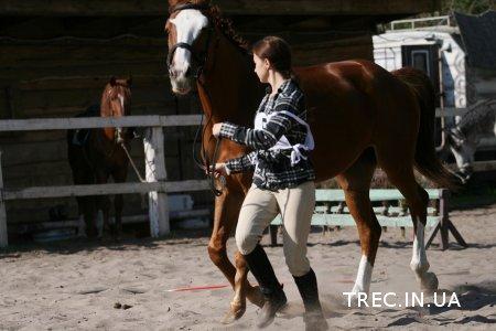 TREC-UA 2017.05.07. Ветконтроль. Фото.