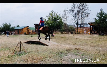 Первый в Украине семинар по дисциплине Working Equitation /Рабочая Езда.